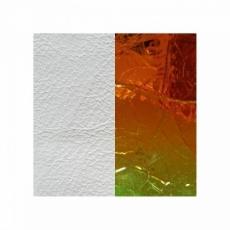 Кожаная вставка Les Georgettes 40 mm white/laser
